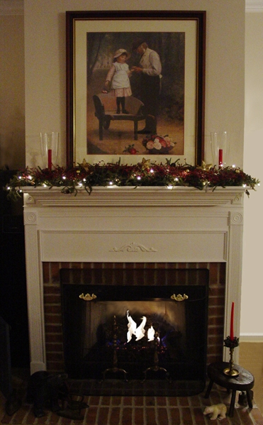 Get electric firestove installed today in Middlebury, IN